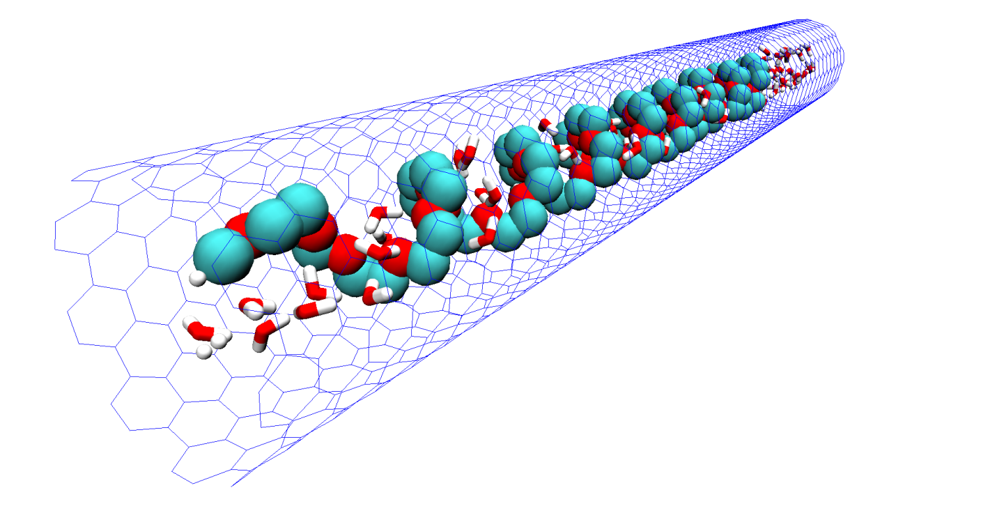Spontaneous insertion, helix formation and hydration of polyethylene oxide in carbon nanotubes