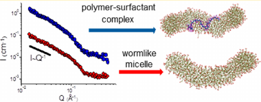 Wormlike Surfactant Micelles with Embedded Polymer Chains